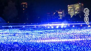 2014年12月。クリスマス前の東京のイルミネーションは素敵にキラキラしてました。