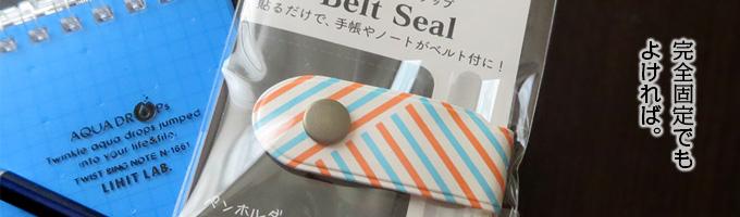 belt_seal_00