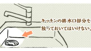アパートに入居したらまず排水口に超気を使う話。