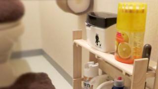 材料費は420円。100円ショップのスノコでトイレの小物収納棚を作ってみました。